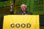 Democratic presidential candidate Sen. Bernie Sanders, I-Vt., addresses The Road to the Green New Deal Tour final event at Howard University in Washington, Monday, May 13, 2019. (AP Photo/Cliff Owen)