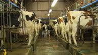 UK Referendum Farming