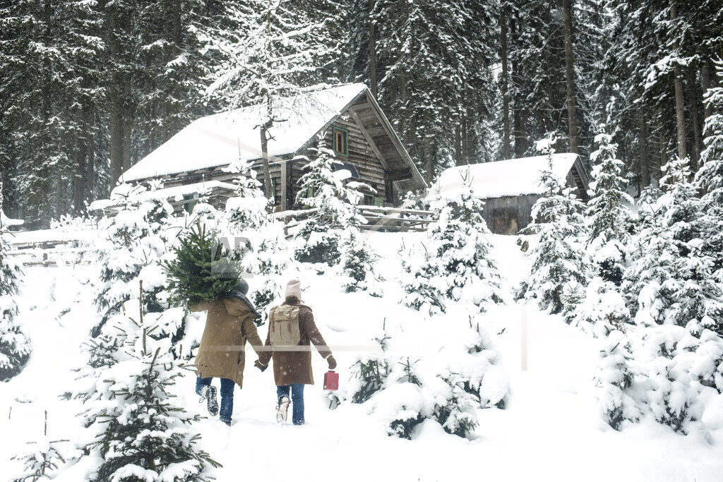 Man carrying tree while walking with woman on snow