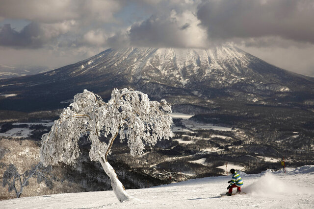"""A man snowboards down a slope overlooking Mount Yotei at a ski resort Feb. 5, 2020, in Niseko, Hokkaido, Japan. """"There's a lot less snow,"""" said Nguyen Nguyen, a skier visiting from Hong Kong. """"This is definitely the worst I've ever seen it."""" (AP Photo/Jae C. Hong)"""