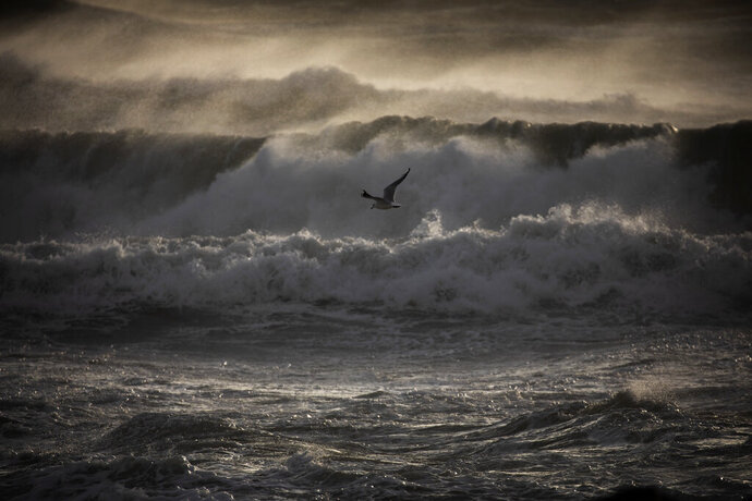 A gull overflies the Mediterranean sea during strong winds in Barcelona, Spain, Monday, Jan. 20, 2020. Two people have died as storms carrying heavy snowfalls and gale-force winds lashed many parts of Spain on Monday. The storm has forced the closure of Alicante airport and some 30 roads in eastern region. Six provinces are on top alert. (AP Photo/Emilio Morenatti)