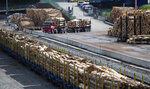 A truck delivers a load of logs arrive at the Port of Lyttelton near Christchurch, New Zealand, Thursday, Sept. 17, 2020. New Zealand's economy shrank by a record 12.2% in the second quarter due to a strict coronavirus lockdown, but forecasts show some bright spots among the gloom. (AP Photo/Mark Baker)