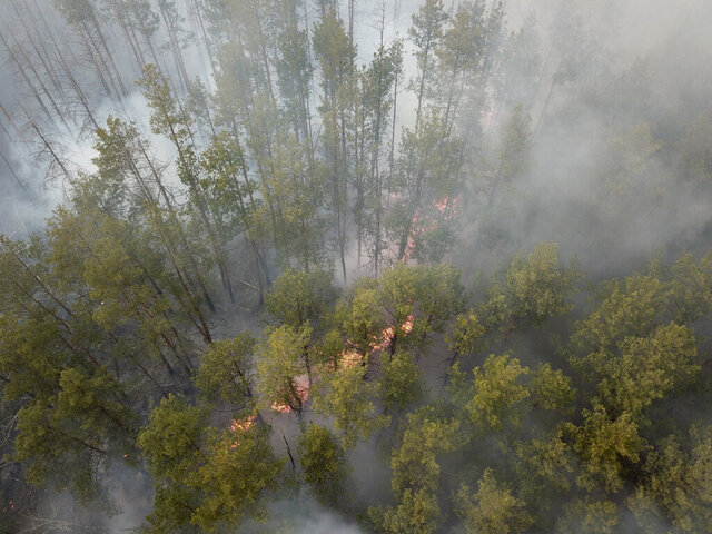 A forest fire burning near the village of Volodymyrivka, in the exclusion zone around the Chernobyl nuclear power plant, Ukraine, Sunday April 5, 2020. Ukrainian firefighters are laboring to put out two forest blazes in the area around the Chernobyl nuclear power station that was evacuated because of radioactive contamination after the 1986 explosion at the plant.  (AP Photo/Yaroslav Yemelianenko)
