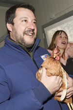 In this photo taken on Jan 13, 2020,  the League's leader Matteo Salvini, holds a hen as he visit a chicken farm in Berceto, near Parma, Italy. The right-wing populist leader is campaigning hard for his League to take control of the wealthy northern region that has been a left-wing stronghold since World War II. (Stefano Cavicchi/LaPresse via AP)