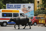 A buffalo crosses a street past a billboard erected as part of a campaign for vaccination against COVID-19 during a weekend lockdown to curb the spread of coronavirus in Prayagraj, India, Sunday, April 18, 2021. (AP Photo/Rajesh Kumar Singh)