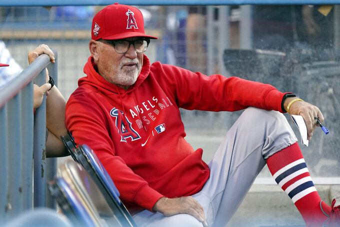 """FILE - In this Aug. 6, 2021, file photo, Los Angeles Angels manager Joe Maddon watches from the dugout before a baseball game against the Los Angeles Dodgers in Los Angeles. Joe Maddon is a big believer in the importance of rest. So much so that each year his clubs go through """"American Legion Week"""" - basically show up, lace up the cleats and take the field. (AP Photo/Marcio Jose Sanchez, File)"""