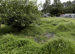 Sewage pools in a field and is blocked off with caution tape Friday, July 9, 2021, at Donovan-Smith Manufactured Home Community in Lewes, Del. (Lauren Roberts/The Daily Times via AP)