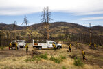 In this photo taken June 6, 2019, in the footprint of the 2018 Carr Fire, members of Cal Fire and the California National Guard grind dead vegetation to mitigate the wildfire risk in Shasta County, California. Despite federal fire suppression costs quadrupling and an increase in employed firefighters, the damages caused by wildfires has increased fivefold. (Anton L. Delgado/News21 via AP)