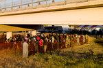 Migrants, many from Haiti, wait in lines to board buses under the Del Rio International Bridge, Friday, Sept. 24, 2021, in Del Rio, Texas. (AP Photo/Julio Cortez)