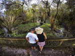 In this Sunday, Oct. 20, 2019 photo, visitors view the scenery and wildlife in the swamp at the Big Cypress National Preserve in Florida. (AP Photo/Robert F. Bukaty)