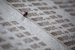In this Saturday, March 16, 2019 photo, a flower is placed next to a name of a massacre victim carved in memorial cemetery in Potocari, near Srebrenica, Bosnia-Herzegovina. Nearly a quarter of a century since Bosnia's devastating war ended, former Bosnian Serb leader Radovan Karadzic is set to hear the final judgment on whether he can be held criminally responsible for unleashing a wave of murder and mistreatment by his administration's forces. United Nations appeals judges on Wednesday March 20, 2019 will decide whether to uphold or overturn Karadzic's 2016 convictions for genocide, crimes against humanity and war crimes and his 40-year sentence. (AP Photo/Darko Bandic)