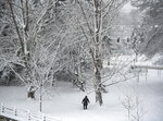 A person takes in the snow covered trees next to the Rideau Canal Western Pathway during a major snowstorm in Ottawa on Saturday, Jan. 16, 2021.   (Justin Tang/The Canadian Press via AP)