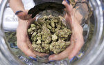 FILE - In this April 21, 2018, file photo a bud tender displays a jar of cannabis at the High Times 420 SoCal Cannabis Cup in San Bernardino, Calif. California faced off in court Thursday, Aug. 6, 2020, against some of its own cities that want to overturn a government rule allowing home marijuana deliveries statewide, even into communities that banned commercial pot sales. (AP Photo/Richard Vogel, File)