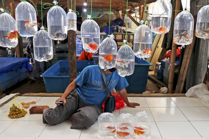 A vendor waits for customers behind bags of aquarium fish for sale at a market on the outskirts of Jakarta, Indonesia, Monday, July 27, 2020. The world's most populous Muslim nation is experiencing the highest number of confirmed coronavirus cases in Southeast Asia. (AP Photo/Tatan Syuflana)