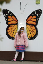 A girl wears a mask while looking at a butterfly exhibit at the San Francisco Zoo on Monday, July 13, 2020, in San Francisco. (AP Photo/Ben Margot)