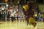 "DFILE - In this Feb. 17, 2016, file photom Saint Joseph's mascot Hawk runs on the court during the second half of an NCAA college basketball game against the Dayton in Philadelphia. As the season begins in earnest this week, with a full slate of Division I games Wednesday, fans will notice the absence of traditions such as the Silent Night game across the college basketball landscape. The population of Krzyzewskiville at Duke will be zero, the Oakland Zoo at Pittsburgh a bit more tame. The Orange Crush at Illinois will be less intimidating and the ghost-like sound of ""Rock Chalk Jayhawk"" at Kansas will be merely the echoes from thousands of previous wins. (AP Photo/Chris Szagola, Dile)"