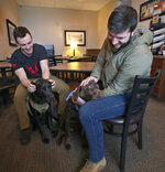 In a Jan. 17, 2020 photo, Jake Tschirhart, a dog trainer with Labs for Liberty, left, pets Bodhi, a black lab service dog as he watches Chris Campbell, right, interact with Brody, a brown lab service dog in Aberdeen, S.D.. Campbell is using Brody temporarily to help deal with PTSD and physical injuries from his service in the military while Tschirhart completes the training Bodhi needs to become Campbell's full time service dog. (John Davis/Aberdeen American News via AP)