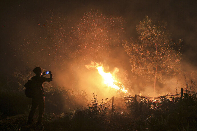 In this Monday, Sept. 16, 2019, file photo, a man uses his mobile phone to take photos of a forest fire in Kampar, Riau province, Indonesia. Indonesian authorities have arrested 185 people suspected of starting forest fires that are spreading a thick, noxious haze around Southeast Asia, police said Monday. (AP Photo/Rafka Majjid, File)