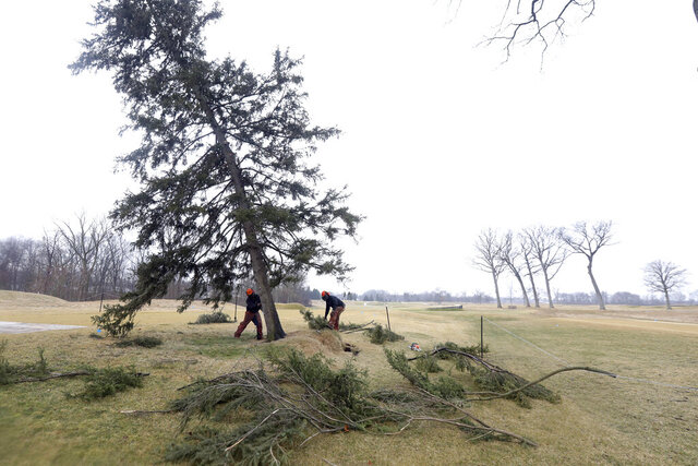 "Ryan Kaczor, left, and Jordan Michaud, right, remove the Hinkle Tree on the golf course at the Inverness Club Friday, March 6, 2020 in Toledo. The Black Hills spruce known as ""The Hinkle Tree"" was uprooted by a gust of wind this week. The tree dated to the 79th Open, when a journeyman pro named Lon Hinkle came up with a way to outsmart the course during the first round.  (Amy E. Voigt/The Blade via AP)"
