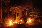 A firefighter uses a drip torch to ignite vegetation while trying to stop the Dixie Fire from spreading in Lassen National Forest, Calif., on Monday, July 26, 2021. (AP Photo/Noah Berger)