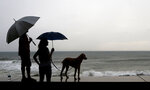 A couple and their dog stand of the seawall prior the landfall of Hurricane Willa, in Mazatlan, Mexico, Tuesday, Oct. 23, 2018. Emergency officials said they evacuated more than 4,250 people in coastal towns and set up 58 shelters ahead of the dangerous Category 3 storm. (AP Photo/Marco Ugarte)