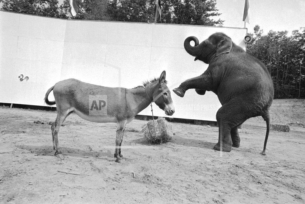 Watchf AP A  NY USA APHS332919 Political Animals 1972