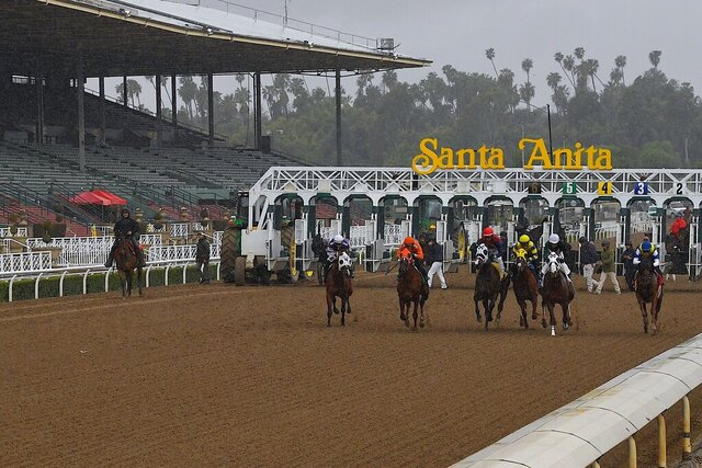 Horses run in the fourth race at Santa Anita Park in front of empty stands Saturday, March 14, 2020, in Arcadia, Calif. While most of the sports world is idled by the coronavirus pandemic, horse racing runs on. (AP Photo/Mark J. Terrill)