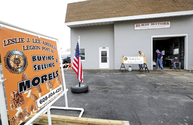 Members of the Leslie J. Lee American Legion Post 85 buy and sell morel mushrooms each spring, usually at the community center, but because the center is closed due to COVID-19 they set up on a former used car lot in Muscoda, Wis., Thursday, May 14, 2020. (Amber Arnold/Wisconsin State Journal via AP)