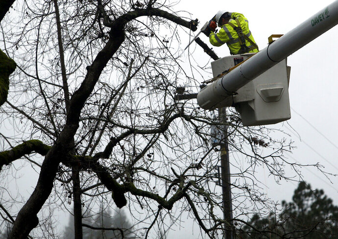 FILE - In this Jan. 8, 2017 file photo, a Pacific Gas and Electric Company worker cuts back branches from a tree that fell across power lines in Felton, Calif. PG&E pushed back Friday, March 22, 2019, on a U.S. judge's revised proposals to prevent the utility's equipment from causing more wildfires, saying it could not