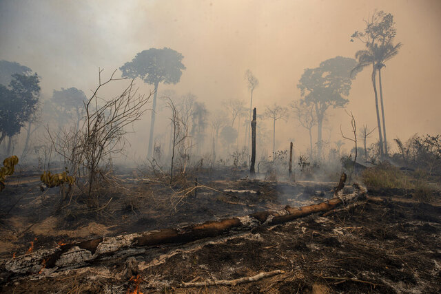 Fire consumes land deforested by cattle farmers near Novo Progresso, Para state, Brazil, Sunday, Aug. 23, 2020. An order putting the military in charge of fighting deforestation was initially due to end in June, but it was recently extended by President Jair Bolsonaro until November despite widespread criticism that it is making the problem worse. (AP Photo/Andre Penner)