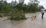 A man walks his dogs past fallen trees after Hurricane Zeta's landfall in Playa del Carmen, Mexico, early Tuesday, Oct. 27, 2020. Zeta is leaving Mexico's Yucatan Peninsula on a path that could hit New Orleans Wednesday night. (AP Photo/Tomas Stargardter)