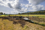 FILE - In this Saturday, June 22, 2019, photo, the charred remains of a skydiving plane that crash on Oahu's North Shore are shown near Waialua, Hawaii. The National Transportation Safety Board says a witness to the crash that killed 11 people reported the plane's engines sounded normal before takeoff, but shortly after the plane left the ground it became inverted and crashed nose down. The NTSB's preliminary report was released Tuesday, July 9, 2019. No cause for the crash was given, which is typical for preliminary reports. (Dennis Oda/Honolulu Star-Advertiser via AP, File)