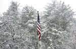The American Flag stands out against the fall snow in Roanoke's Fishburn Park on Monday, March 12, 2018, in Roanoke, Va. (Heather Rousseau /The Roanoke Times via AP)