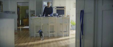 Super Bowl Ads Preview Amazon