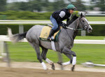 Exercise rider Joe Ramos rides Tacitus during workouts at Belmont Park in Elmont, N.Y., Wednesday, June 5, 2019. The 151st Belmont Stakes horse race is scheduled for Saturday, June 8. (AP Photo/Seth Wenig)