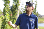 Tim Byrne of Knob View Hops inspects the hop plants growing on his farm in Floyds Knobs, Ind., Wednesday, Aug. 11, 2021. The hops are featured in local beers such as brews from Our Lady of Perpetual Hops. (Brooke McAfee/News and Tribune via AP)