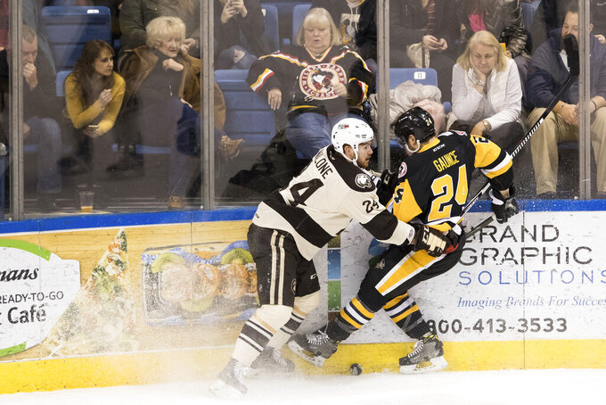 FILE - In this Jan. 6, 2017, file photo, fans watch as Wilkes-Barre/Scranton Penguins' Cameron Gaunce, right, and Hershey Bears' Brad Malone collide into the wall during an AHL hockey game at Mohegan Sun Arena in Wilkes-Barre, Pa. Unlike the NFL, NBA or Major League Baseball that can run on television revenue, it's impossible for some minor sports leagues in North America to go on in empty stadiums and arenas in light of the coronavirus pandemic. These attendance-driven leagues might not play again at all in 2020, putting some teams in danger of surviving at all and potentially changing the landscape of minor league sports in the future. (Christopher Dolan/The Citizens' Voice via AP, File)