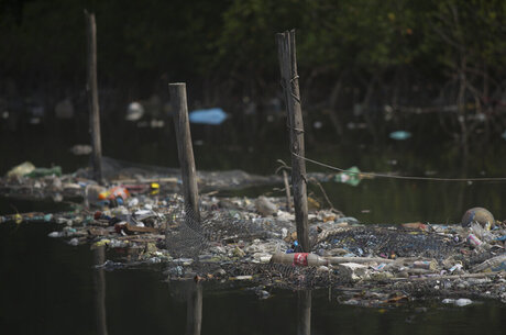 Brazil Polluted Bay