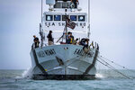 FILE - In this March 25, 2018 file photo released by the Sea Shepherd organization, crew members aboard the Farley Mowat pull in an illegal net used for fishing totoaba in the Gulf of California, Mexico. The environmentalist group Sea Shepherd said Thursday, March 14, 2019 that it found the badly decomposed body of what appeared to be a vaquita porpoise, one of perhaps only 10 that remain in the world. (Petey Crawford/Sea Shepherd via AP, File)