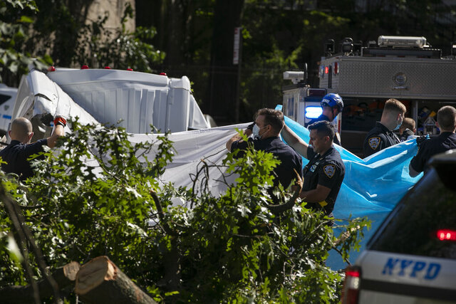 New York City Police officers shield a person from view who died after a tree fell on a van as Tropical Storm Isaias moved past New York, Tuesday, Aug. 4, 2020, in New York. (AP Photo/Frank Franklin II)