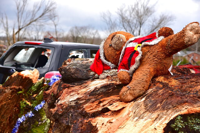 This Santa bear came to rest in the splinter of a tree in the Locust Grove area just off Highway 70 west of Cookeville, Tenn.,Tuesday, March 3, 2020. (Jack McNeely/The Herald-Citizen via AP)