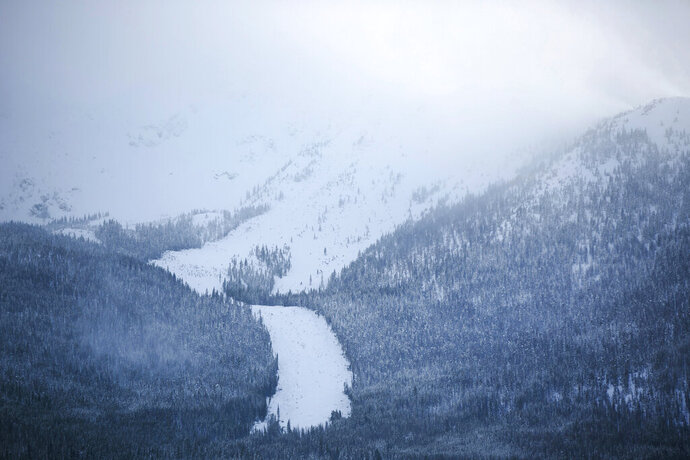 A new avalanche slide path seen below Mount Victoria, Thursday, March 7, 2019, in Frisco, Colo. At least 4 feet of snow fell onto the Tenmile Range in the last 5 days and has caused many new avalanches in the area in the recent days. (Hugh Carey/Summit Daily News via AP)