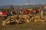 Sheep are kept for sale at a market ahead of the Muslim festival Eid al-Adha, in Srinagar, Indian controlled Kashmir, Friday, July 16, 2021. Authorities in Indian-controlled Kashmir on Friday said there is no ban on the sacrifice of animals during the upcoming Islamic Eid al-Adha holiday, a day after the government asked law enforcers to stop the sacrifice of cows, calves, camels and other animals. (AP Photo/ Dar Yasin)