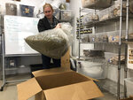 In this Dec. 17, 2019, photo, Jesse Richardson, co-founder of The Brothers Apothecary, which makes teas and capsules from hemp-derived CBD, inspects a bag of raw hemp at his company's warehouse in Portland, Ore. Richardson is concerned that interim hemp farming rules put out by the U.S. Department of Agriculture will destroy his supply chain of hemp and hurt the rapidly growing hemp industry. (AP Photo/Gillian Flaccus)