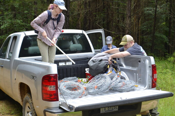 Tom Lewis, right, of Liberty, right, serves as guide for Mississippi State University bear researchers, from left, Lacy Dolan, Carly Haywood, Thomas Rovery and Jacob Thacker in Amite County, Miss., on June 2, 2021. (Ernest Herndon/The Enterprise-Journal via AP)