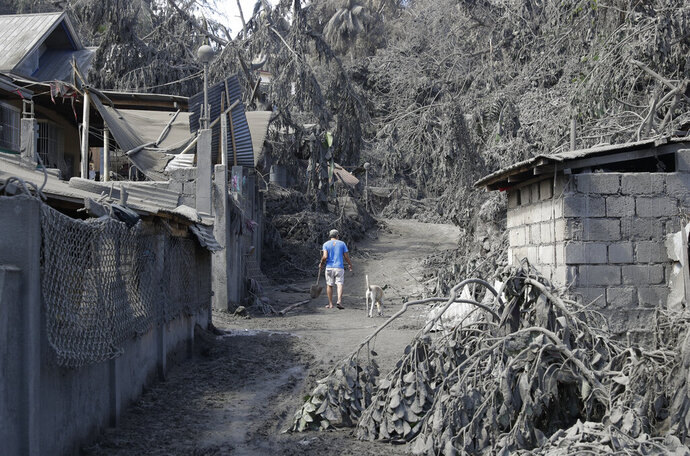 A resident walks past structures and trees damaged by volcanic ash at Laurel, Batangas province, southern Philippines on Tuesday, Jan. 14, 2020. Taal volcano is spewing ash half a mile high and trembling with earthquakes constantly as thousands of people flee villages darkened and blanketed by heavy ash. (AP Photo/Aaron Favila)