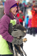 Rebecca Lessard of Wings of Wonder gives a crowd a chance for a closer look at the juvenile bald eagle before it is released back into the wild on Monday, Jan 1, 2018 outside Glen Lake Public Schools in Maple City, Mich. (Jan-Michael Stump/Traverse City Record-Eagle via AP)