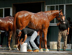 Triple Crown hopeful Justify is bathed by Carlos Martin after a workout at Belmont Park, Friday, June 8, 2018, in Elmont, N.Y. Justify will attempt to become the 13th Triple Crown winner when he races in the 150th running of the Belmont Stakes horse race on Saturday. (AP Photo/Julie Jacobson)