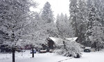 The Cascade Shores General Store is shrouded in a blanket of white snow after the storm system moved through Nevada County, Friday, Jan. 22, 2021. (Liz Kellar/The Union via AP)