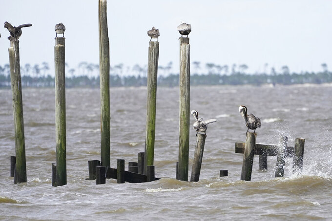 A stiff breeze across the Mississippi Sound attracts resting sea gulls on old pilings, Saturday, June 19, 2021, in Ocean Springs, Miss. Tropical Storm Claudette brought much evening and early morning rain and left a stiff breeze along the Mississippi Gulf Coast. (AP Photo/Rogelio V. Solis)